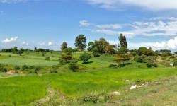 Ethiopia landscape Sep 2015