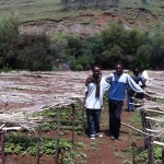 Ephrem, the Hopethiopia reforestation worker (in White) with workers onsite